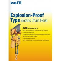 Wholesale Explosion-Proof Hoist Explosion-Proof Electric Chain Hoist from china suppliers