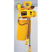 Wholesale NERP Series Single & Dual Speed Hoist with Push Trolley (1/8 - 5 Tons) from china suppliers