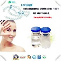 Wholesale Amino Acids And Vitamin Peptide And Protein EGF Growth Factor from china suppliers