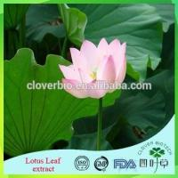 Wholesale Lotus Root Powder Extract 20:1 /Lotus Seed Extract Nuciferin 0.2% 1% Lotus Leaf Extract from china suppliers