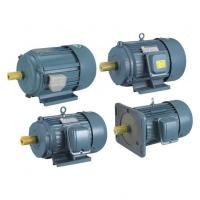 Side Channel Blowers Y Series Three-phase Induction Motors