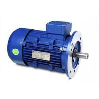 Wholesale YD Variable Speed Multi Speed Three-Phase Asynchronous Motor from china suppliers
