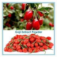 100% nature organic wolfberry fruit extract capsule