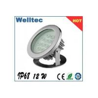 China 12W underwater waterproof led light on sale
