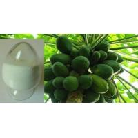 Wholesale Papain from china suppliers