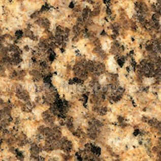 Quality Chinese granite,Tiger Skin Gold,S1093 for sale