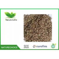 Wholesale Cumin Seed from china suppliers