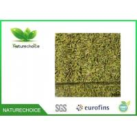 Wholesale Fennel Seed from china suppliers