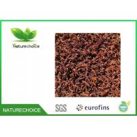 Wholesale Star Anise from china suppliers