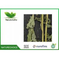 Buy cheap Traditional Chinese Herb Isodon Japonicus Burm Hara from wholesalers