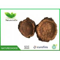 Buy cheap Traditional Chinese Herb Rhubarb Root from wholesalers