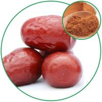 Wholesale Jujube Fruit(ziziphus Jujuba) Extract, Improving Immune and Protecting Liver Proportional Extraction from china suppliers