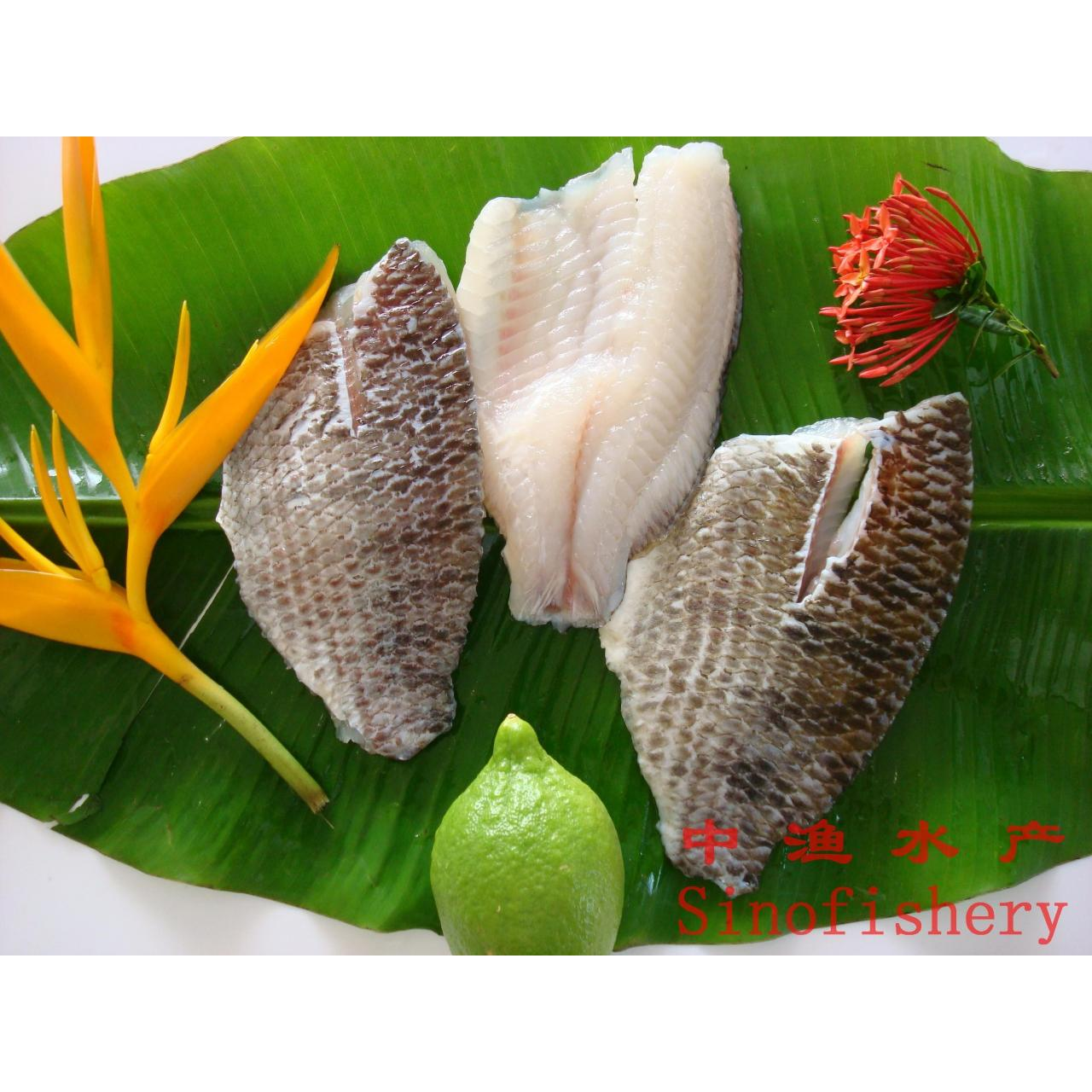 Wholesale skin on tilapia fillet from china suppliers