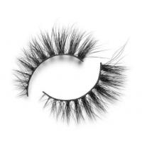 Buy cheap EXTENSIONS LASHES SO EXTRA DOHA from wholesalers