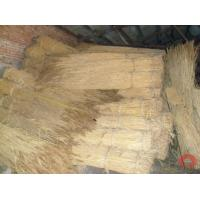 Wholesale Thatching Reed Reed from china suppliers