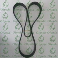 Fuel Injection Pump Belt 01183376